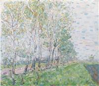 birch trees by nico van rijn