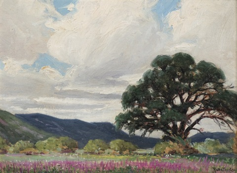 great oaks from little acorns grow by rolla s taylor