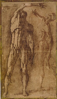 two studies of an écorché figure by andrea boscoli
