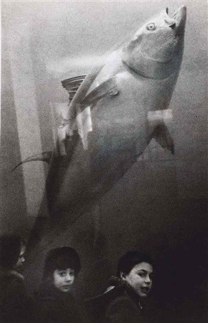 untitled andrea and pablo frank at the acquarium by robert frank