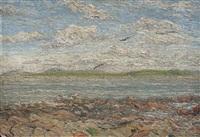 costa de punta del este by dolcey schenone puig
