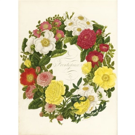 a collection of roses from nature bk w 90 works and frontispiece folio by mary lawrance