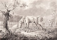 urinating horse by dirk langendyk