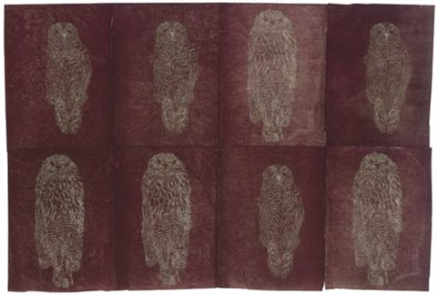 untitled owls on 8 sheets by kiki smith