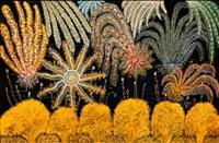 fireworks by henri bastin