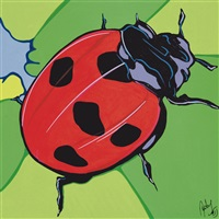 coccinella by (angel eusebio rivero sierra) andy