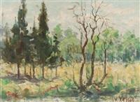 landscape by nikos xenos