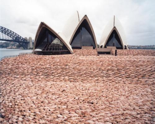sydney 1 opera house by spencer tunick