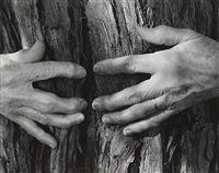 woman's hands by wynn bullock