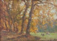 autunno nel parco sella (biella) by alberto cecconi