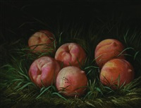 still life with peaches by peter baumgras