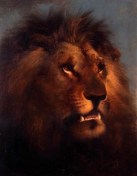 a lion's head by edward robert smythe
