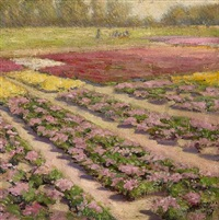 landscape with rows of pink flowers by felix albrecht harta