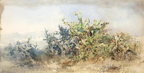 cacti with village in the background by angelos giallina