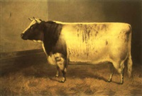 princess josephine 2nd, a champion cow, at smithfield and birmingham by frank babbage