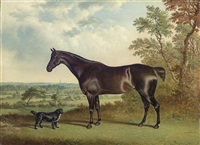 a dark brown horse and a spaniel in a landscape by george jackson