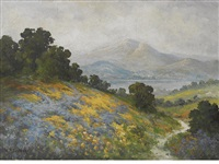 wildflowers with mount tamalpais beyond by william franklin jackson