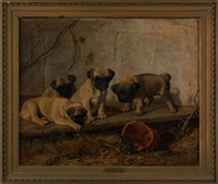 four pugs staring at a frog by franklin whiting rogers