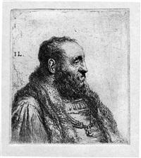 profilo di uomo barbuto con collo di pelliccia by jan lievens