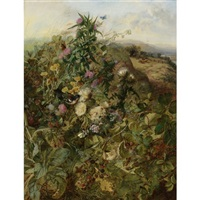 wild raspberries and thistles by john wainwright