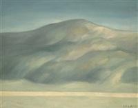 monte grande by alfonso sucasas