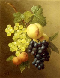 a swag of peaches, grapes and apricots by arnoldus bloemers