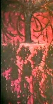 le dernier arbre by jeanine ancelle