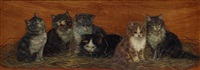 a group of six kittens by bessie bamber