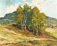 birken by augustin mervart
