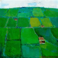 green fields, ireland by christina snellman