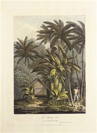 view in the island of cracatoa (+ 4 others; 5 works) by john webber