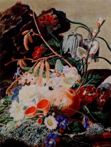 a summer mixture by juliet williams