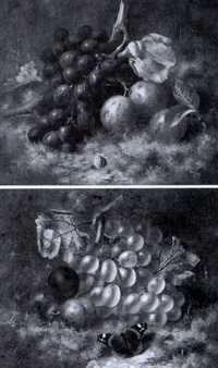 red grapes with plums and beetle (+ white grapes with plums and butterfly; 2 works) by william harding smith