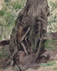 viejo tronco by juan lascano