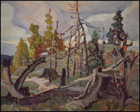 sketch 6 tree stump by franklin carmichael