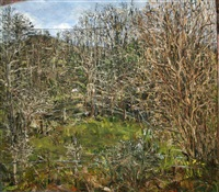 wellfield, march catkins by nick miller