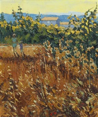 the edge of the barley field - provence by alan cotton