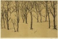 arbres by tetsuo komai
