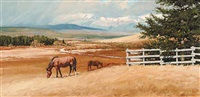 ranching country by richard audley freeman