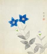 bellflower by shoko uemura