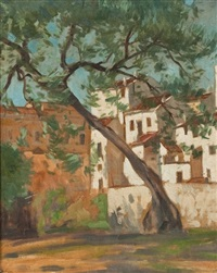 old olive tree, ronda by william macdonald
