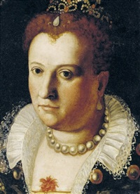 portrait of a noblewoman by bernardino campi