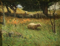 sheep in the pasture by franklin b. de haven