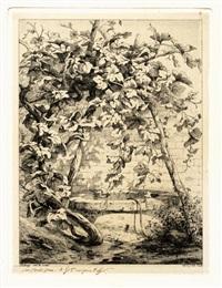 la fougère au plantain d'eau, les petits tussilages, la vigne au puits, la fougère et la grande consoude (5 works) by eugene blery