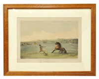 catching the wild horse, pl. 4 by george catlin