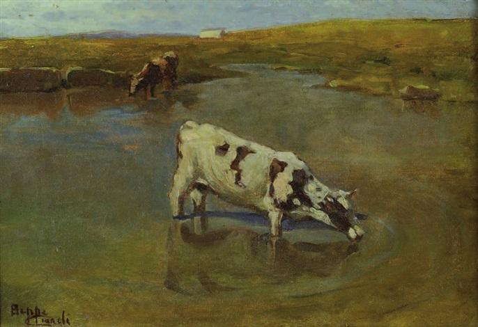 mucca allabbeveratoio by beppe ciardi