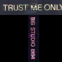 trust me only big studio by bruce nauman