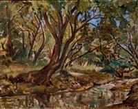 trees by zakkie (zacharias) eloff