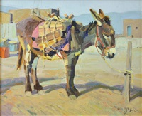 pueblo burro by john moyers