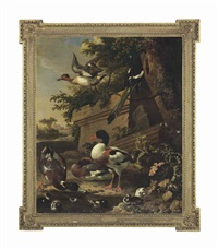 sheldrake ducks and ducklings with a magpie in a garden, a village beyond by melchior de hondecoeter